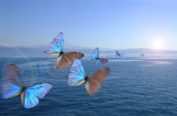 Colourful butterflies flying over a serene ocean. Sedation dentist in london